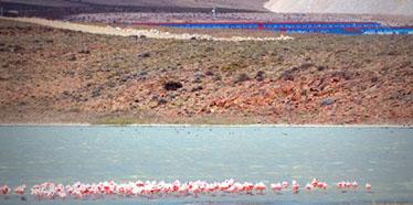 Laguna cercana a Campamento Cerro Vanguardia, Santa Cruz. Atrás, campamento permanente construído por Modular Homes.